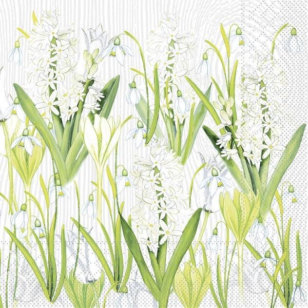 Tissue Serviette Amelie, 40 x 40 cm, 100 Stück - Mank