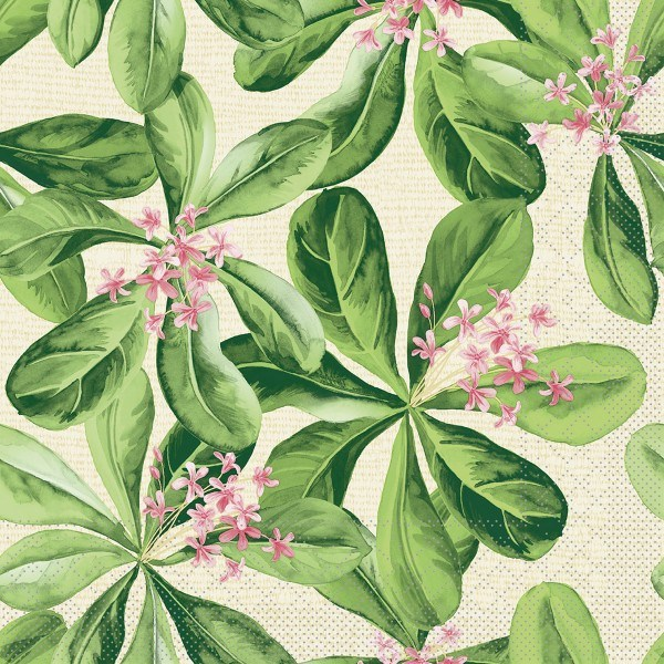 Tissue Serviette Jane, 33 x 33 cm, 100 Stück