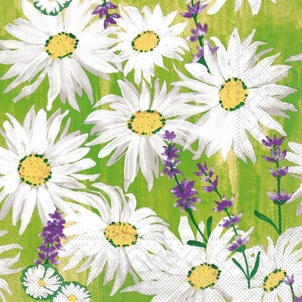 Tissue Serviette Nadine, 40 x 40 cm, 100 Stück - Mank