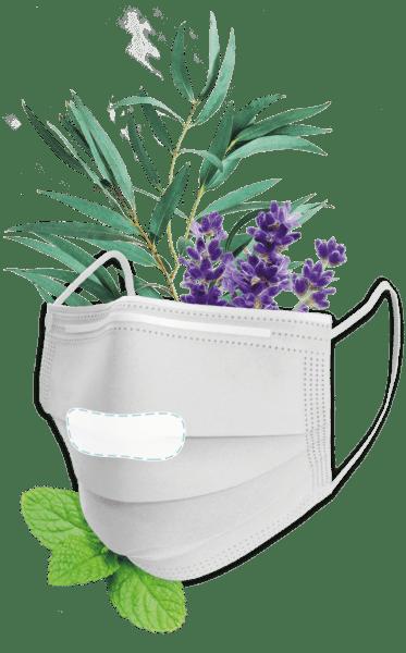 Frischer Duft in Ihrer Maske, 10 Masken Pads - Scenty Menthy