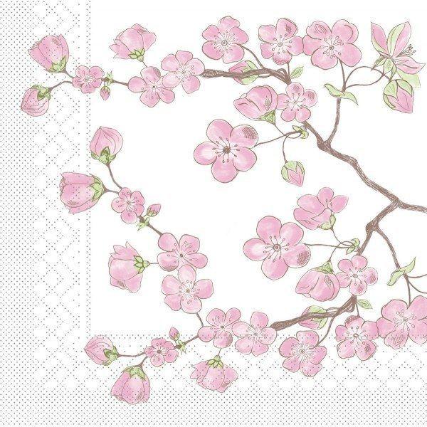 Tissue Serviette Asia, 40 x 40 cm, 100 Stück - Mank